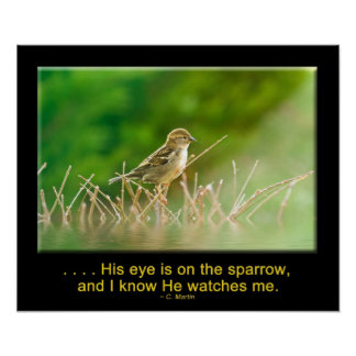 His Eye is on the Sparrow -POSTER Posters
