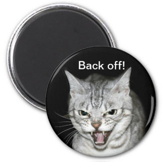 Hissing cat magnet