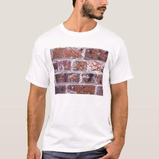 Historic 18th Century red brick wall T-Shirt