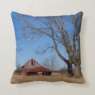 Historic Barn in Illinois, USA Pillow