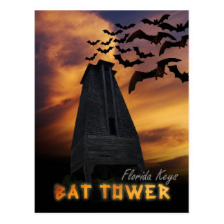 Historic Bat Tower, Sugarloaf Key, Florida Postcard