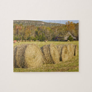 Historic farm in the Buffalo National River, Puzzle