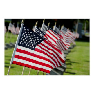 Historic military cemetery with US flags Poster