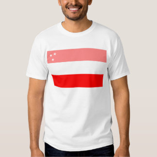 Historical Assyrian Flag (before WWI) Tees