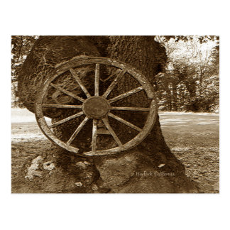 Historical Wagon Wheel Postcard