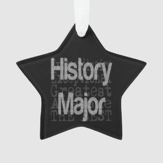 History Major Extraordinaire Ornament