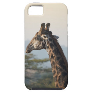 Hitching a ride on a giraffe iPhone 5 case