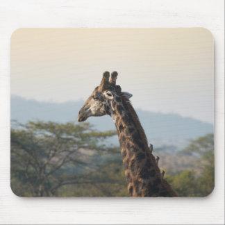 Hitching a ride on a giraffe mousepads