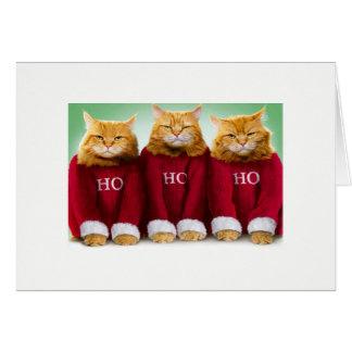 Ho Ho Ho Cat Xmas Card