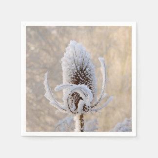 Hoarfrost on Teasels Winter Photo Scenic Nature Disposable Napkin