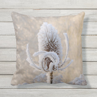 Hoarfrost on Teasels Winter Photo Scenic Nature // Throw Pillow