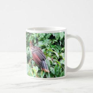 "Hoatzin ""Stinky Turkey""  Pastaza River, Ecuadorean Coffee Mugs"