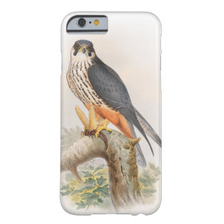 Hobby Falcon John Gould Birds of Great Britain Barely There iPhone 6 Case
