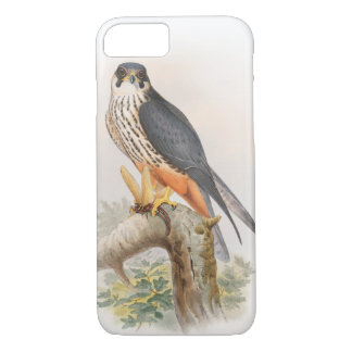 Hobby Falcon John Gould Birds of Great Britain iPhone 7 Case