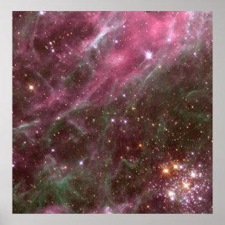Hodge 301, Tarantula Nebula Poster