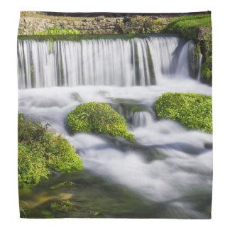 Hodgson Spring Falls Bandana