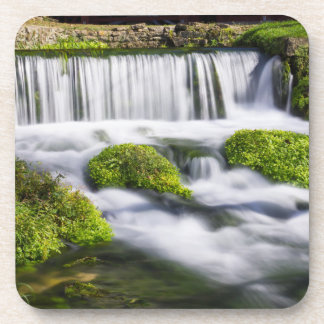 Hodgson Spring Falls Coaster