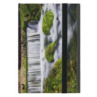 Hodgson Spring Falls Cover For iPad Mini