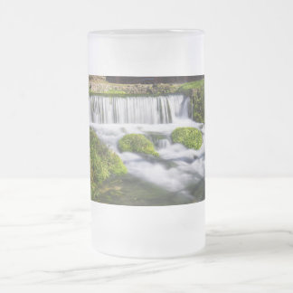 Hodgson Spring Falls Frosted Glass Beer Mug