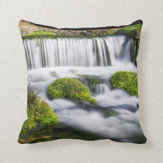 Hodgson Spring Falls Throw Pillow