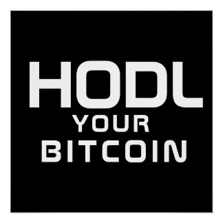 HODL your bitcoin Poster