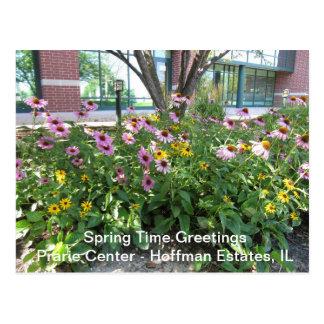 Hoffman Estates, Illinois Prarie Center Greeting P Postcard