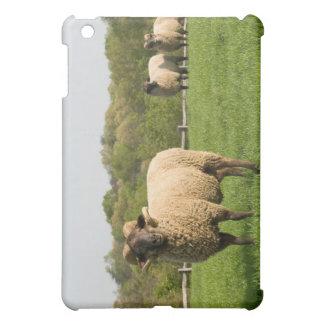 Hog Island Sheep iPad Mini Covers