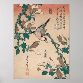 Hokusai Java Sparrow on Magnolia GalleryHD Poster