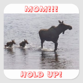 Hold Up!!! Moose Stickers