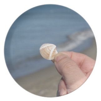Holding a seashell in the hand plate