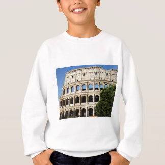 holes and arches sweatshirt