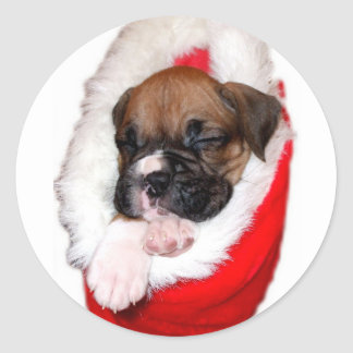 Holiday boxer puppy sticker