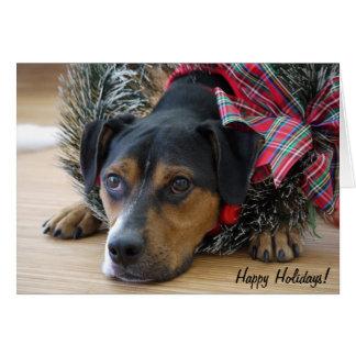 """Holiday Card """"Santa's Cookies?"""""""