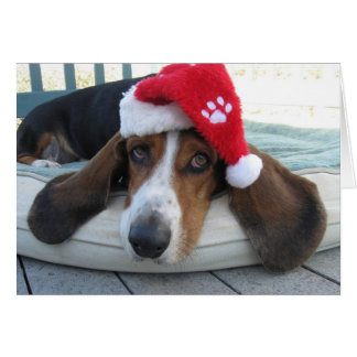 Holiday Card with Basset Hound