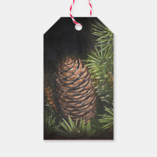 Holiday Chalk Drawn Pinecone and Pine Needles Pack Of Gift Tags