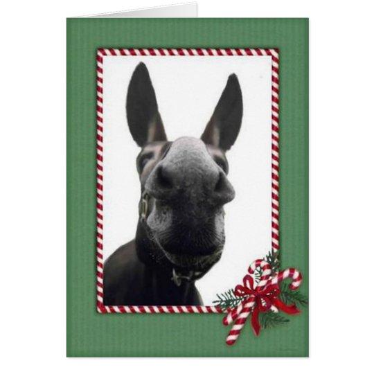 Holiday Cody Card