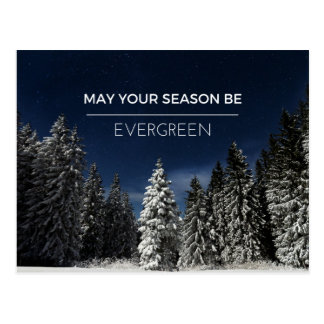 Holiday Evergreen Postcard