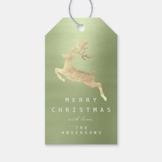 Holiday Gift Tag Mint Green Pastel Golden Reindeer