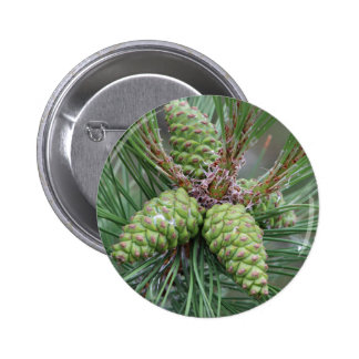 Holiday Pine Cones 2 Inch Round Button