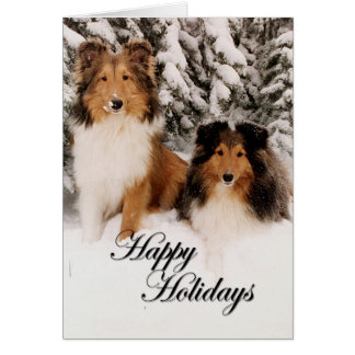 Holiday Shelties Card