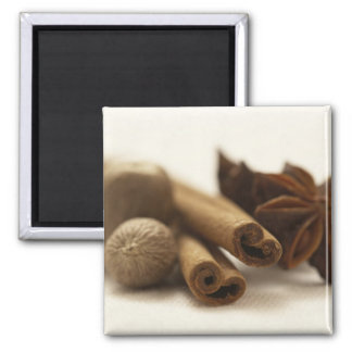 Holiday Spices Magnet