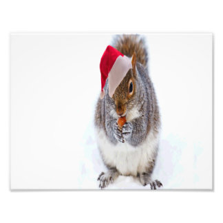Holiday Squirrel Photographic Print