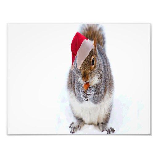 Holiday Squirrel Photo Art