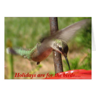 Holidays are for the birds.... card