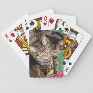 Holidays - Christmas - Everyday - Two Cats Poker Deck