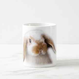 Holland Lop Coffee Mug