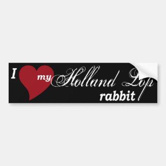 Holland Lop rabbit Bumper Sticker