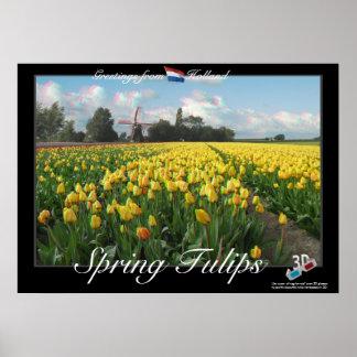 Holland Spring Tulips Landscape 3D Anaglyph Poster