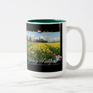 Holland Spring Tulips Landscape 3D View Anaglyph Two-Tone Coffee Mug