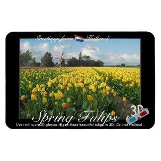 Holland Tulips Landscape 3D View Anaglyph Magnet